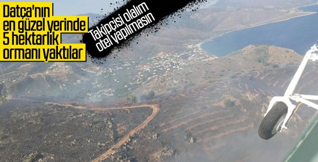 Datça'da yanan alan havadan görüntülendi