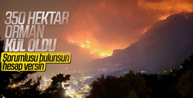 Muğla'da orman yangını durduruldu