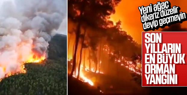 Dalaman'daki yangının boyutu gün ağarınca ortaya çıktı