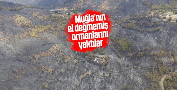 Dalaman'da çıkan yangın söndürüldü