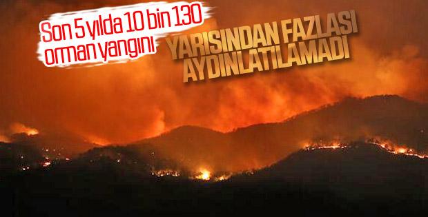 Türkiye'deki orman yangınlarının nedenleri bilinmiyor