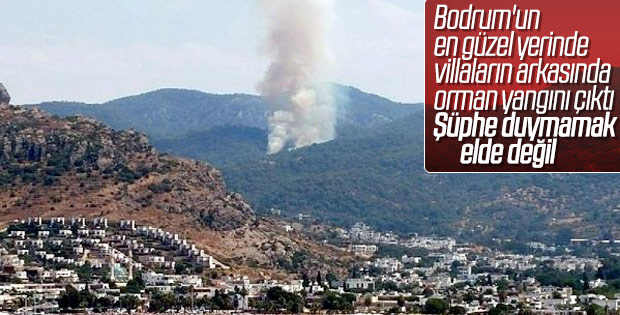 Muğla'da yine yangın çıktı