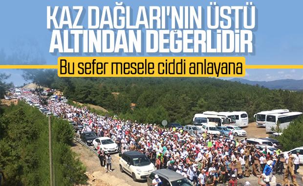 Kaz Dağları'nda ağaç katliamına karşı eylem