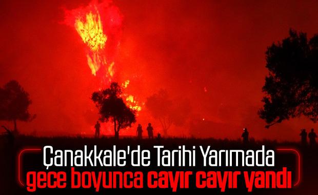 Tarihi Gelibolu yarımadasında orman yangını