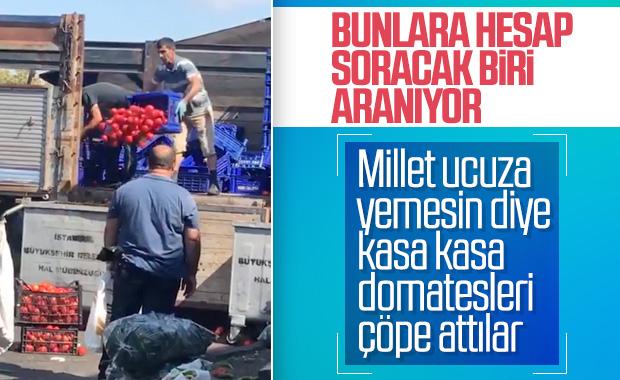 İstanbul'da hal pazarında çöpe atılan domatesler