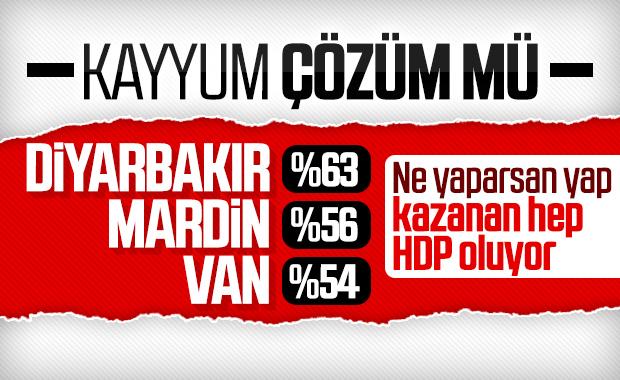 Kayyumun hizmetlerine rağmen yine HDP seçildi