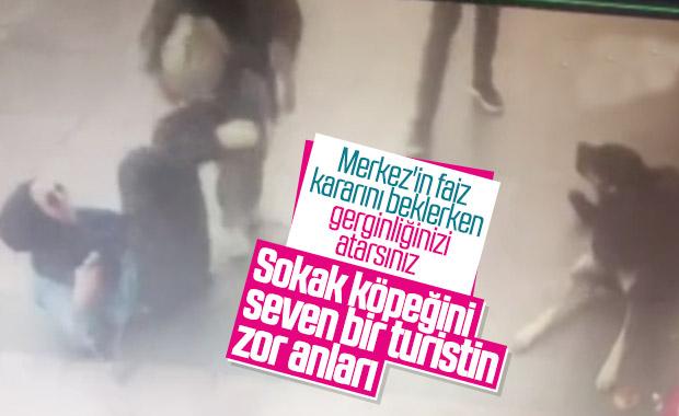 Beyoğlu'nda köpek tarafından ısırılan turist