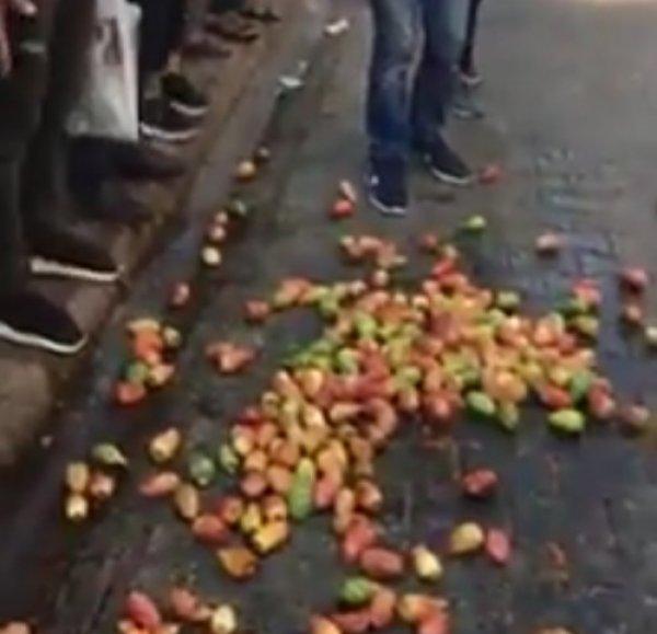 Zabıta ekipleri incirleri yere döktü, mahalleli ayaklandı