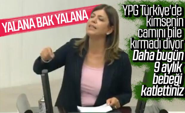 HDP'li Meral Danış Beştaş'ın yalanları