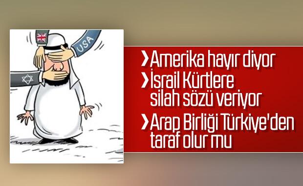 Arap Birliği Türkiye'yi yine kınadı