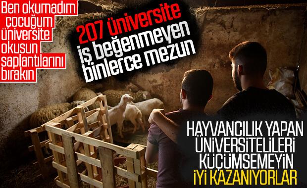 Şanslarını hayvancılıkta deneyen üniversiteli gençler