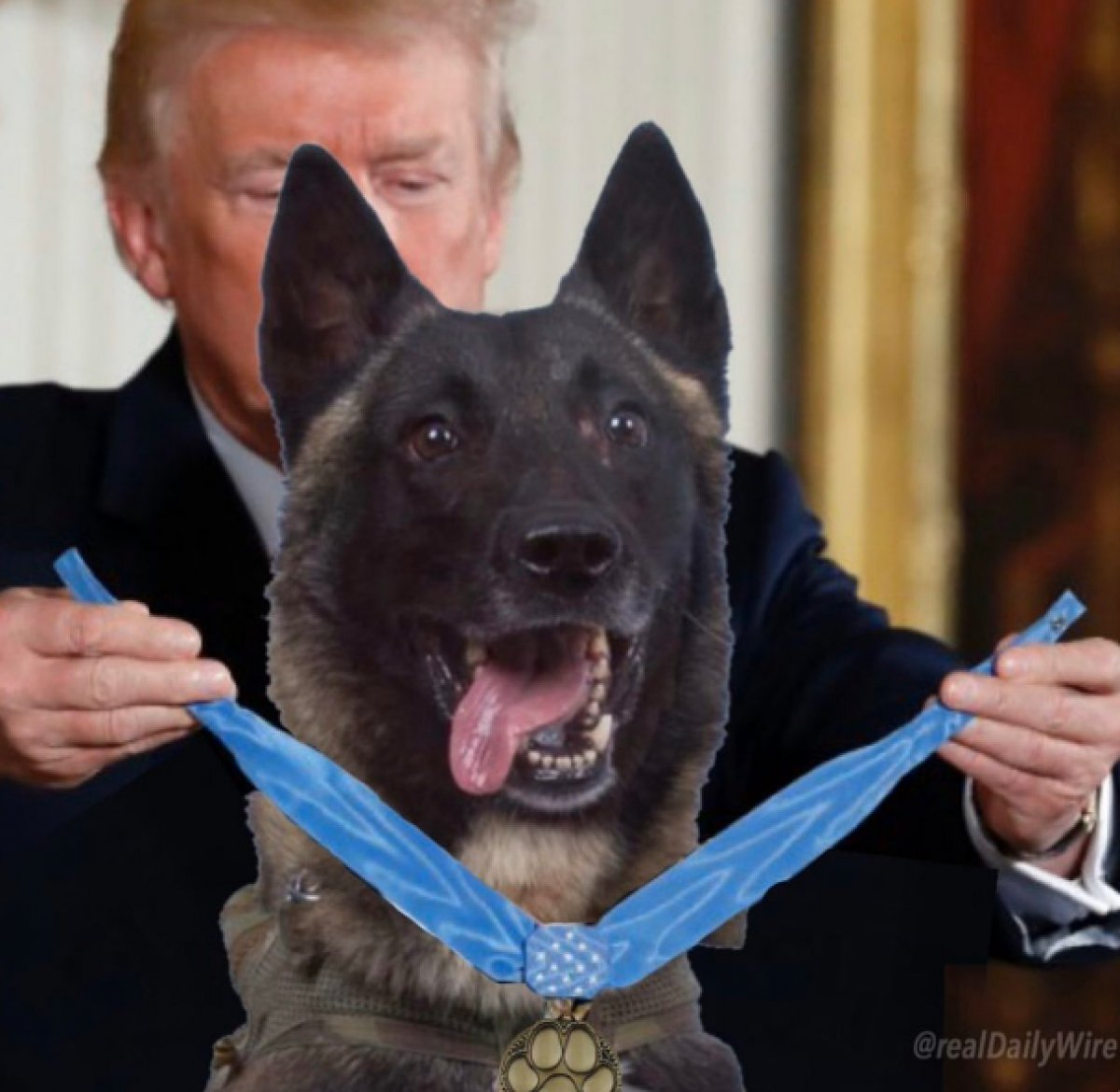 ABD Başkanı Trump'tan montajlı yeni paylaşım