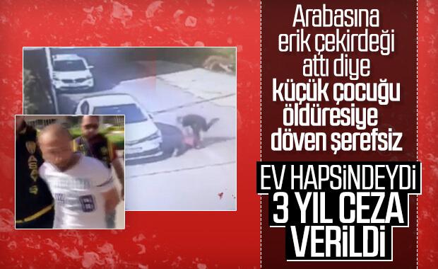 Tuzla'da aracına erik atan çocuğu darbeden şahsın cezası açıklandı