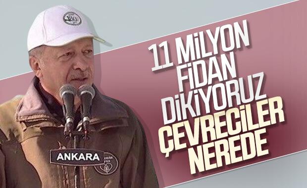 11 milyon fidan topraklarla buluştu
