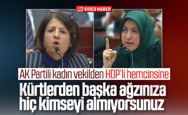 AK Partili ve HDP'li kadın vekillerin tecavüzcü polemiği