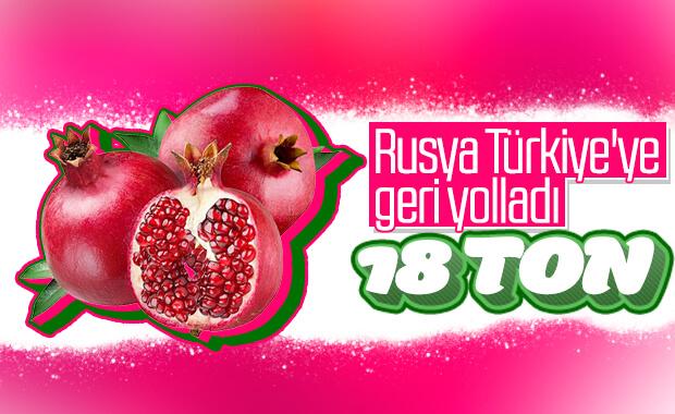Rusya, Türkiye'den aldığı 18 ton narı yolladı