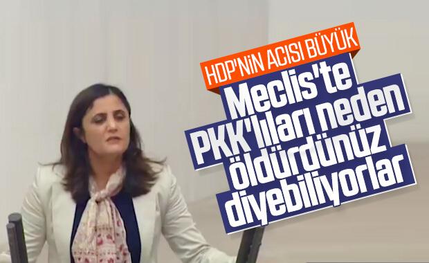 HDP, Ağrı'da öldürülen teröristlere üzüldü