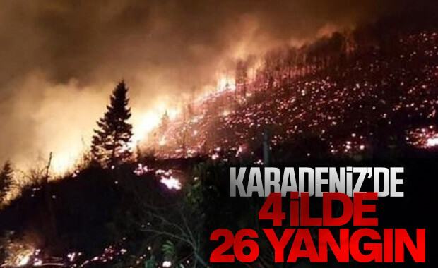Karadeniz'de 4 ilde yangın