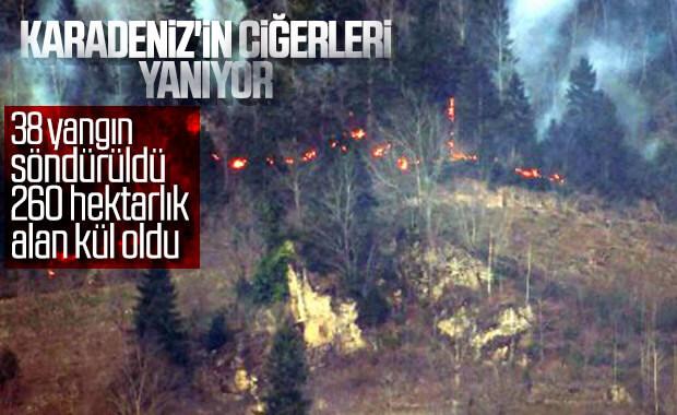 Karadeniz'de 55 yangından 38'i söndürüldü