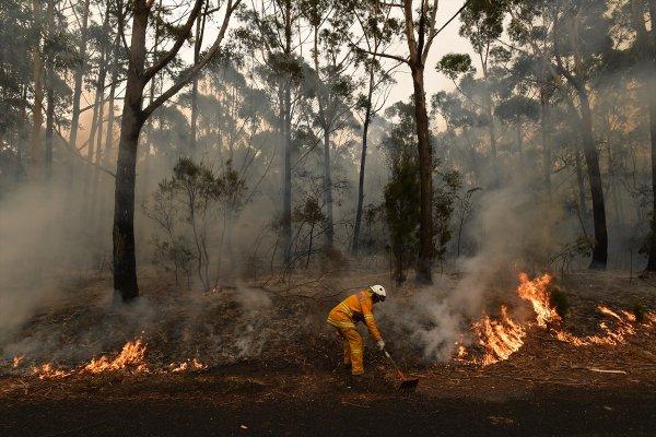 Avustralya'daki yangın devam ediyor