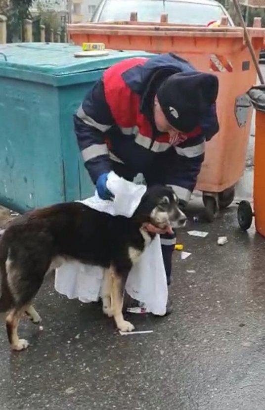 Temizlik işçisi ve köpeğin içleri ısıtan görüntüsü