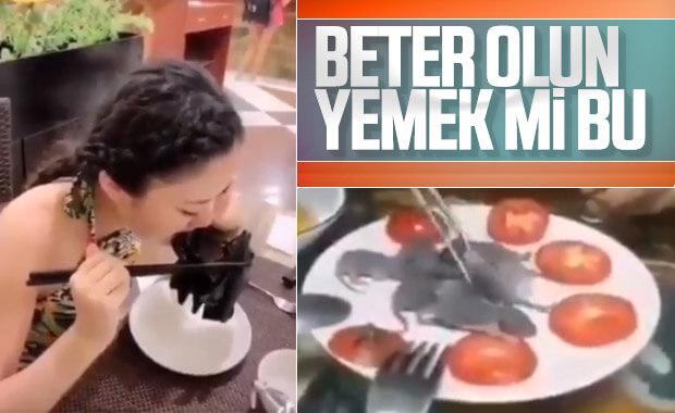 Çinlilerin yediği mide bulandırıcı yemekler