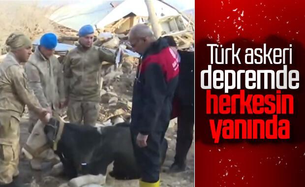 Depremden etkilenen hayvanlara da yardım gitti