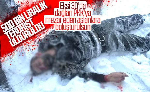 Gri kategorideki terörist Erzurum'da öldürüldü