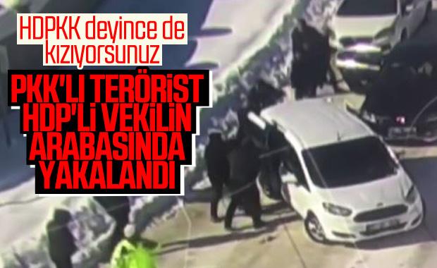 PKK'lı terörist HDP'li vekilin evinde bulundu