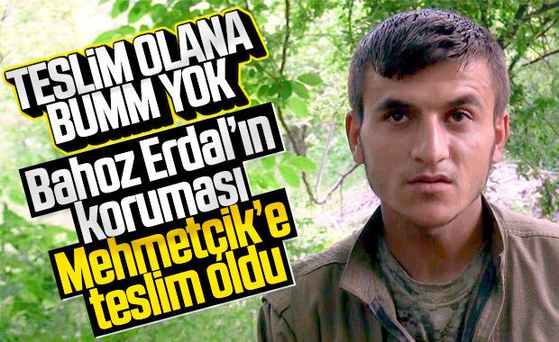 Bahoz Erdal kod adlı teröristin koruması teslim oldu