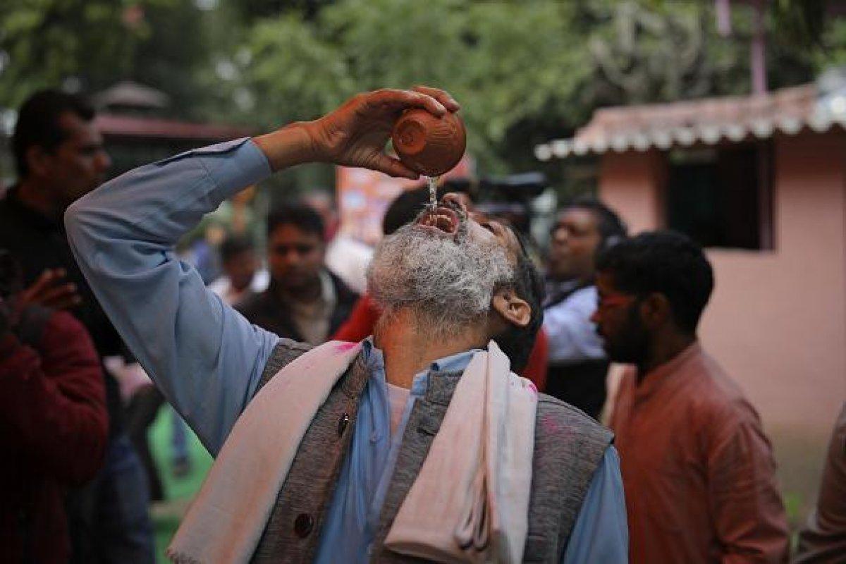 Hindistan halkı koronadan korunmak için inek idrarı içti