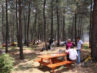 Tarım ve Orman Bakanlığı'ndan mangal yasağı