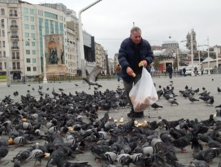 Taksim Meydanı'nda aç kalan kuşları besledi