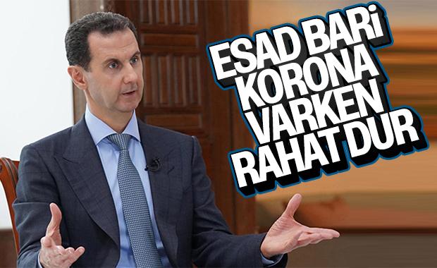 AB'den Esad'a ateşkese uy çağrısı