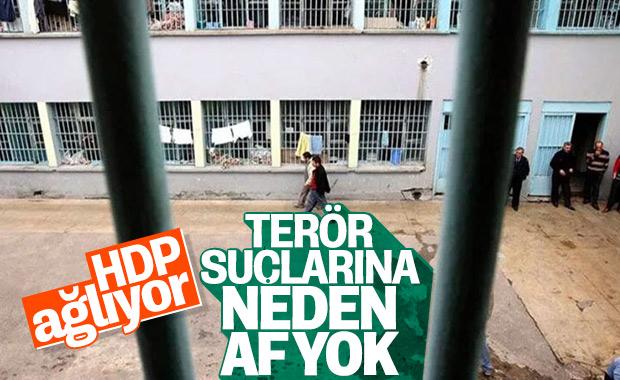 HDP infaz yasasından memnun değil