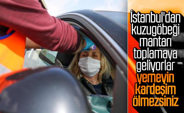 Antalya Valisi'nin mantar isyanı