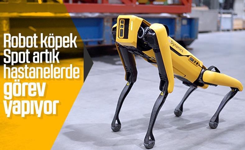 Boston Dynamics'in robot köpeği Spot, hastanelerde kullanılıyor