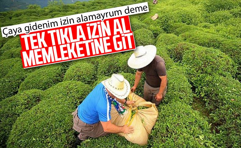 İçişleri Bakanlığı'dan çay üreticilerinin seyahat iznine ilişkin genelge