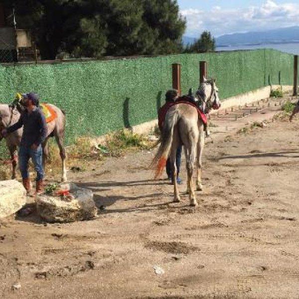 Plajda atlarıyla gezen ciritçilere 16 bin TL ceza