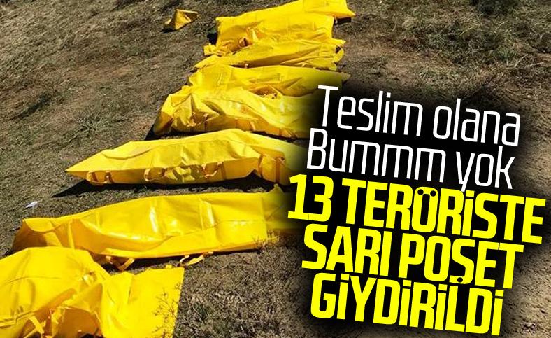 Haftanin, Zap, Hakurk ve Gara'da 13 terörist öldürüldü