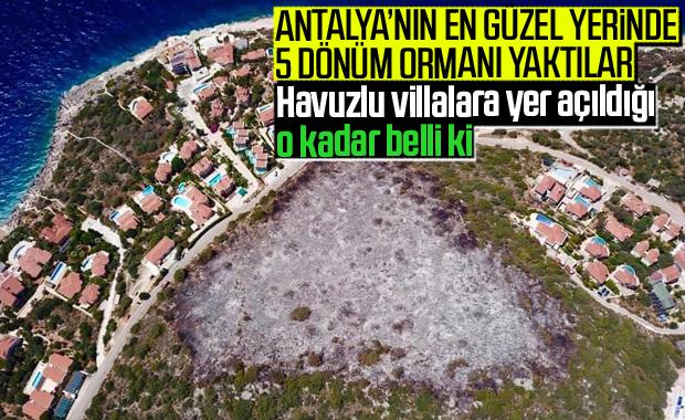 Antalya Kaş'ta şüpheli orman yangını