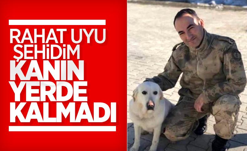 Zafer Akkuş'u şehit eden terörist öldürüldü