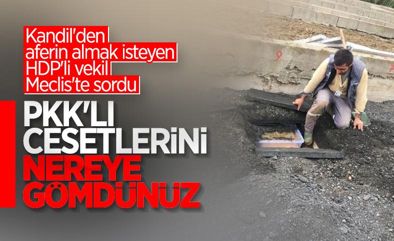 HDP'nin gündemi öldürülen PKK'lıların nereye gömüldüğü