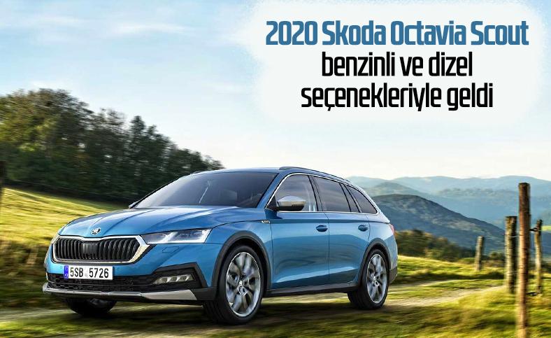 2020 Skoda Octavia Scout tanıtıldı