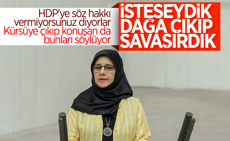 HDP'den Meclis'te terör propagandası