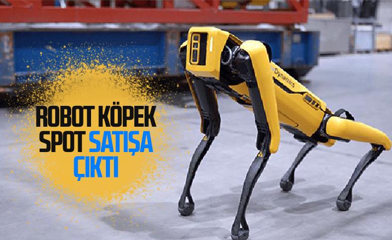 Boston Dynamics'in robot köpeği Spot artık satışta