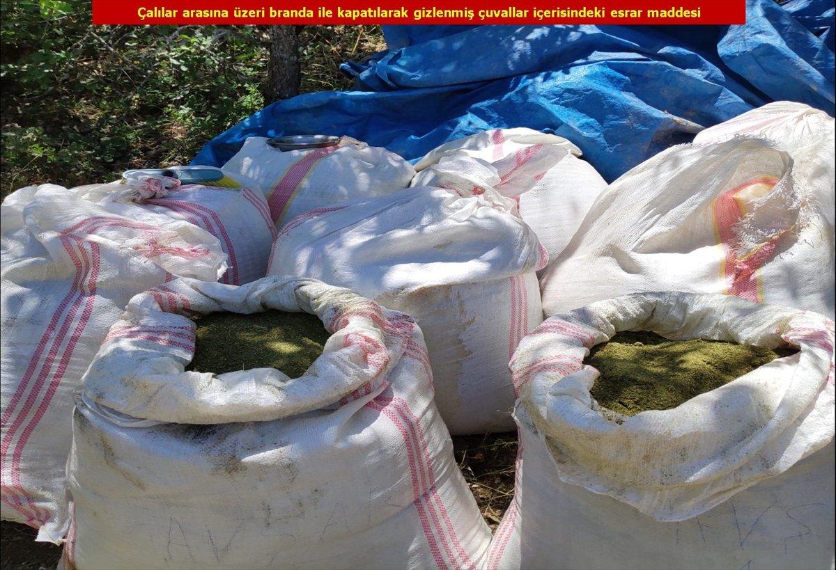 Diyarbakır'da son 4 yılın rekoru: 7.5 milyon kök kenevir #4