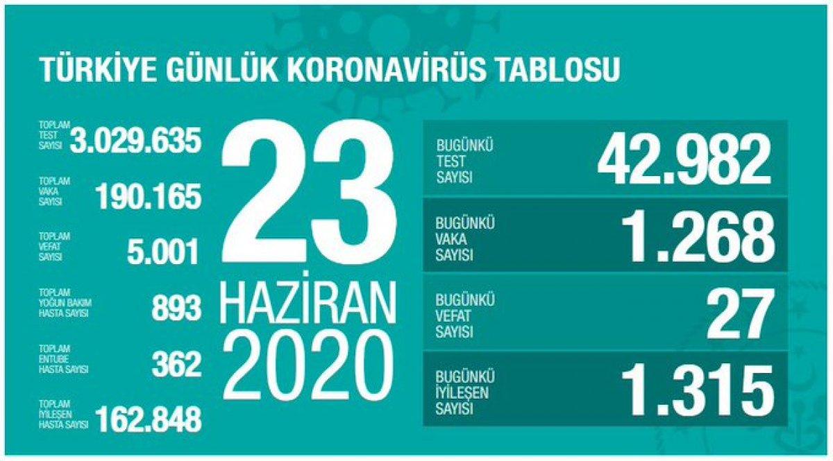 Türkiye'de koronavirüs salgınında son durum #2