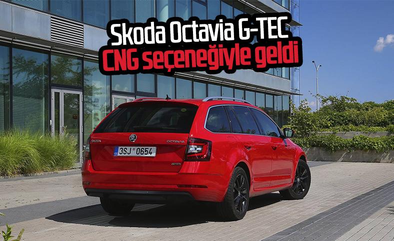 Skoda 2020 Octavia G-TEC tanıtıldı