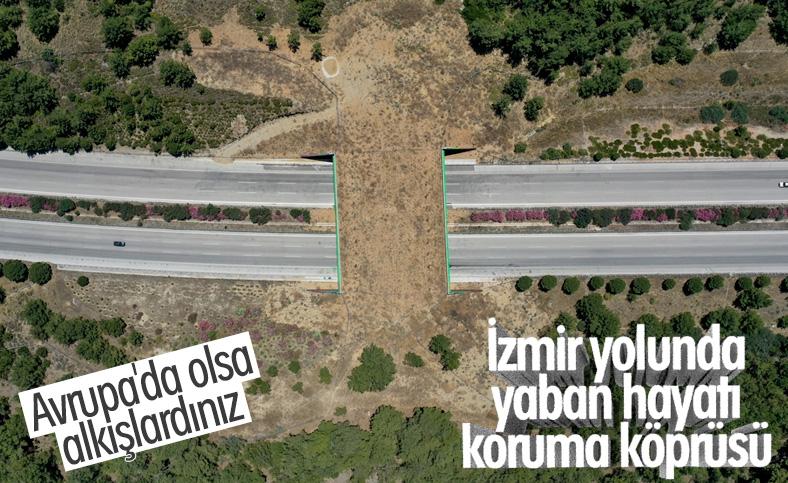 İzmir-Çeşme otoyolundaki ekolojik köprü tamamlandı